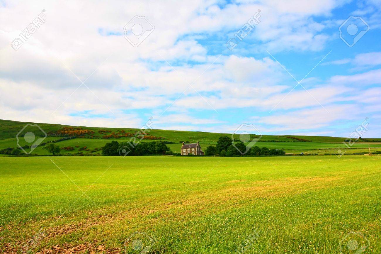 Sunny landscape with fields and blue sky in Scotland Stock Photo - 9253955