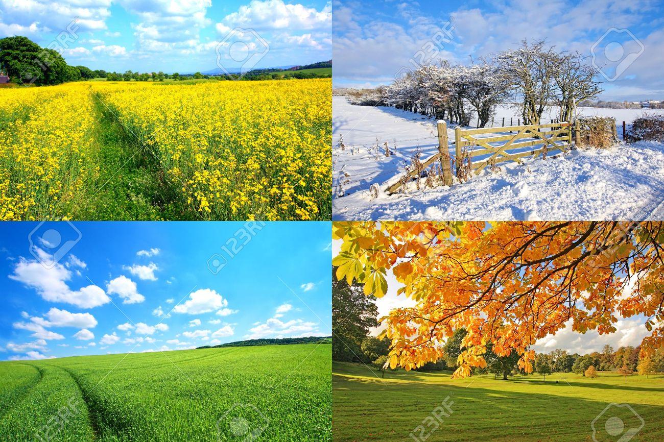 4 Seasons Collection, Horizont...