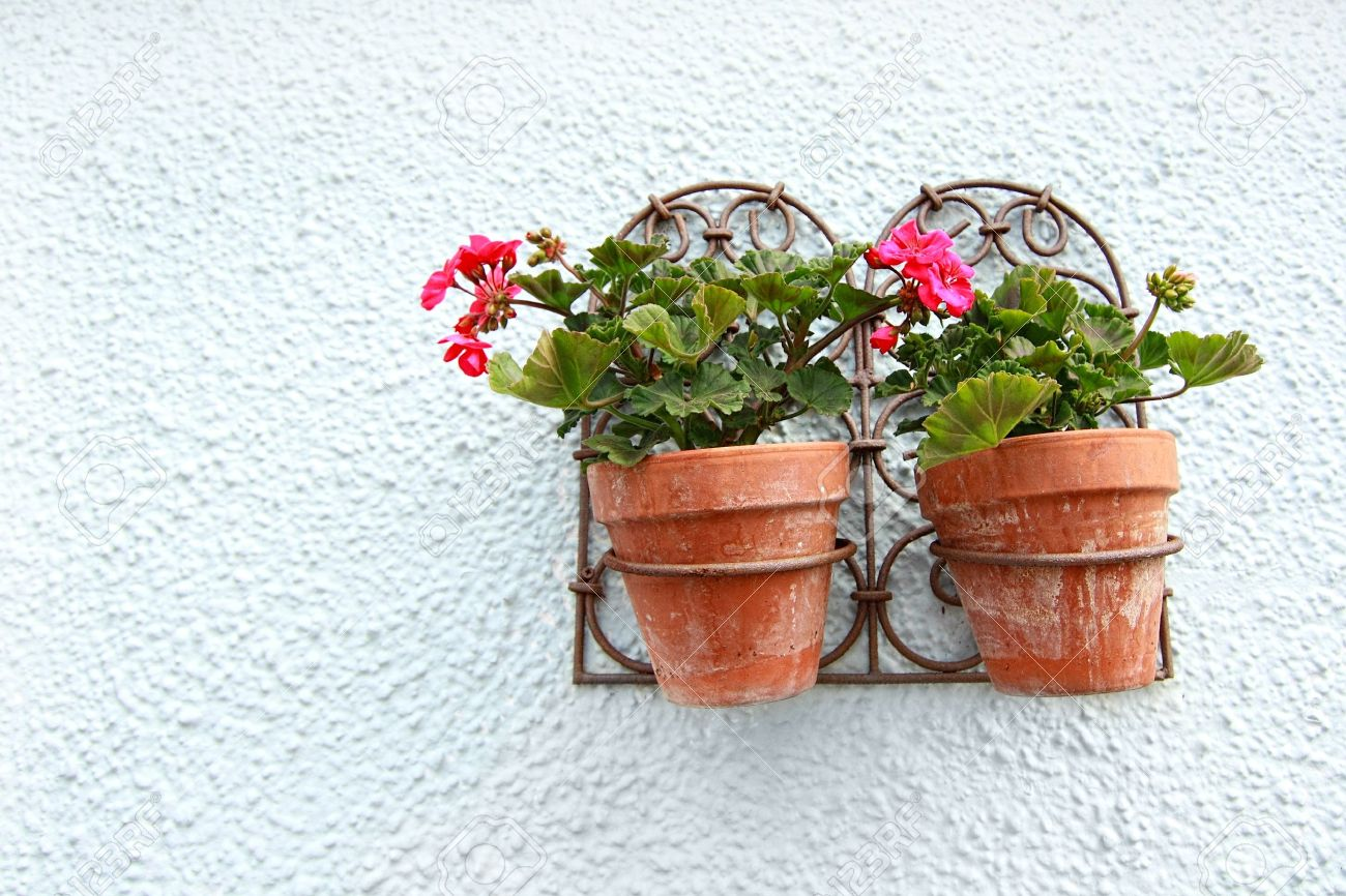 Wall Hanging Flower Pots geranium in the flower pots hanging on the wall stock photo