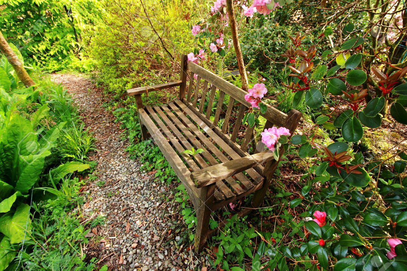Beautiful Romantic Garden With Wooden Bench And Azalea Trees Stock