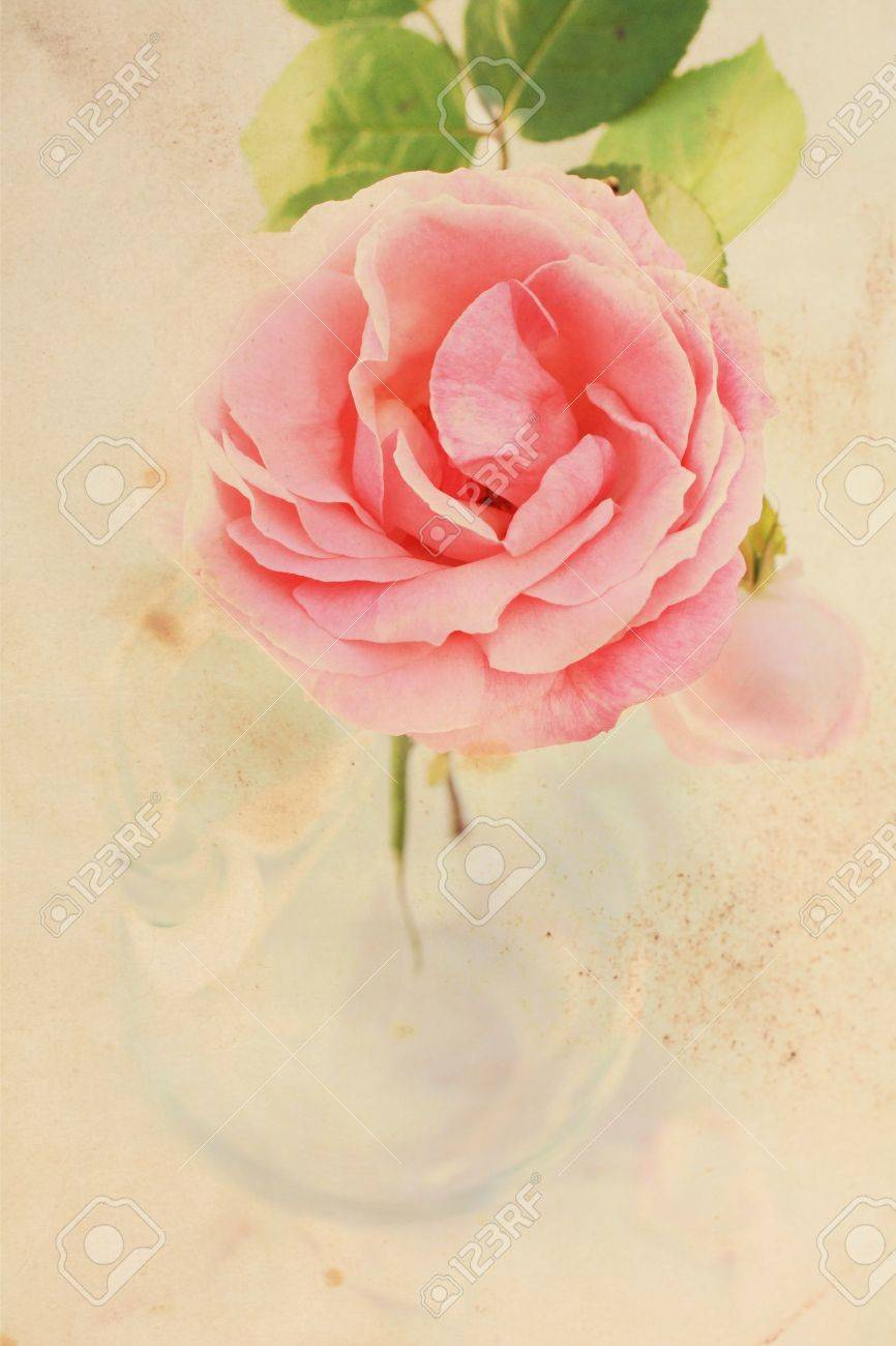 Floral vintage background - Pretty Floral Vintage Background With Pink Rose Stock Photo 14968682