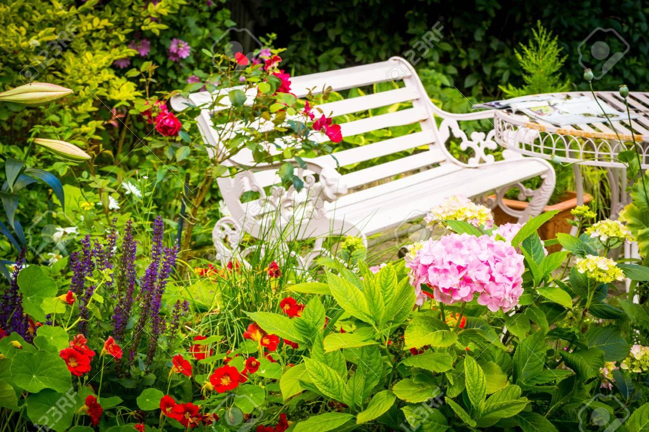 Beau jardin romantique avec une variété de fleurs épanouies, l\'été