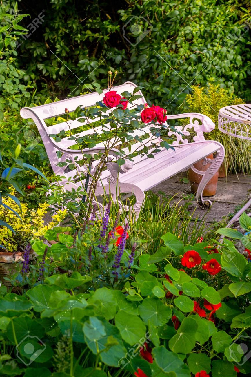 Roses rouges à la maison, jardin romantique