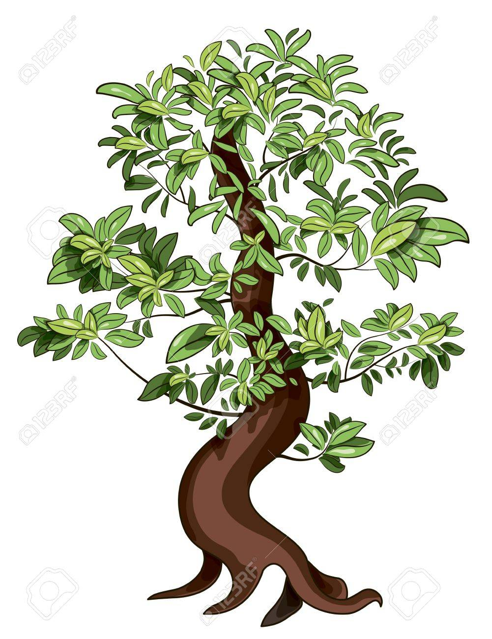 Illustration Of Japan Decorative Ficus Bonsai Royalty Free ...