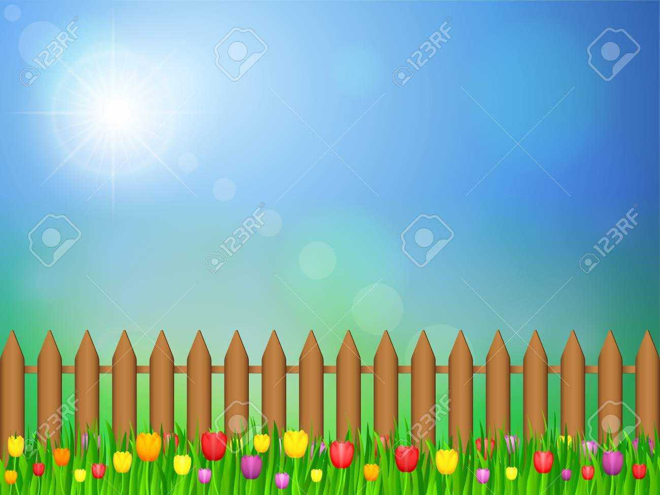 Tulip flowers field and blue sky. Vector illustration. Stock Vector - 18224226
