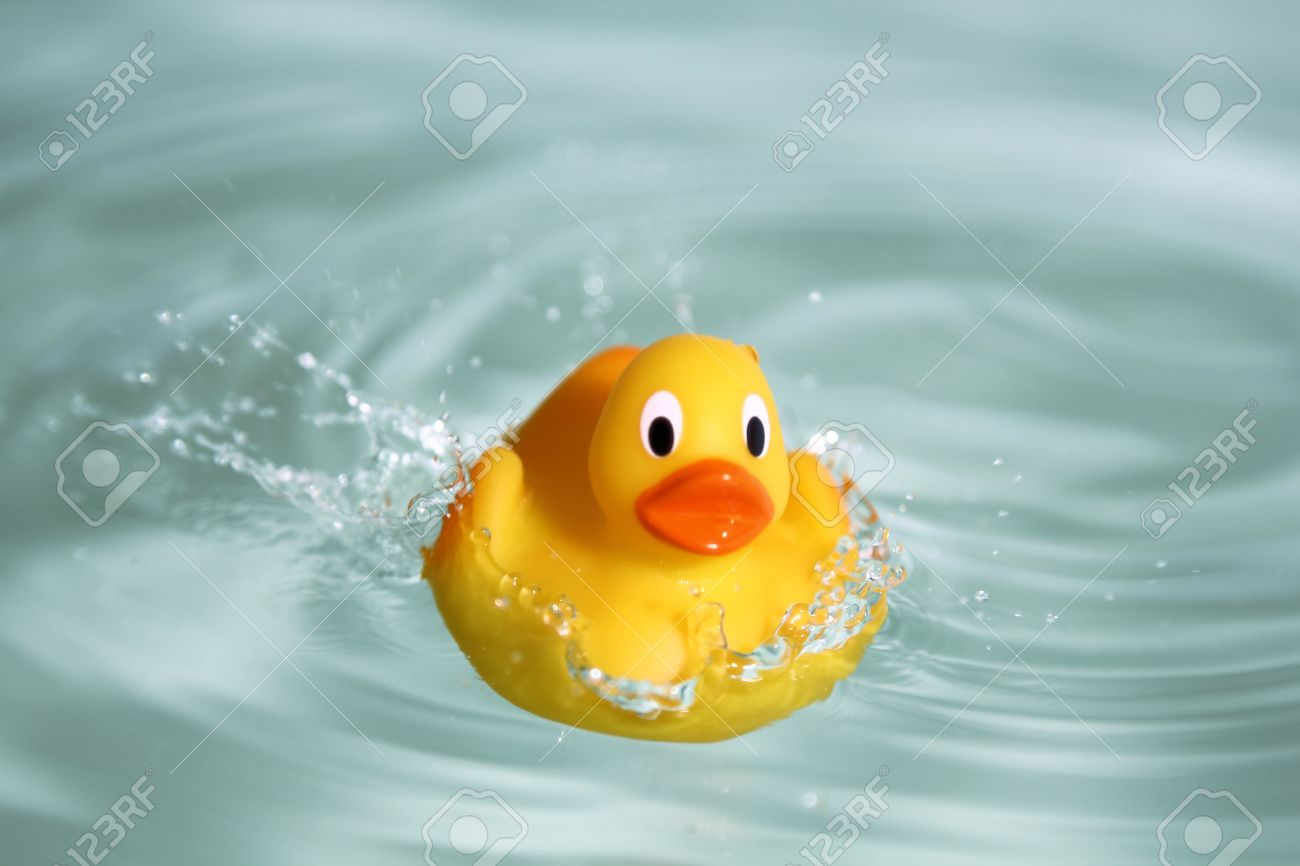 rubber duck stock photos u0026 pictures royalty free rubber duck