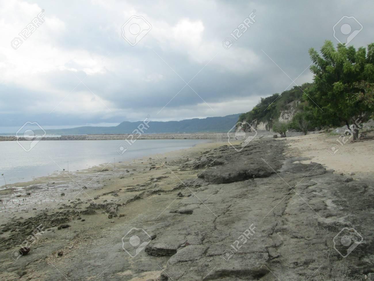 海岸平野は揺れる の写真素材・画像素材 Image 33488789.