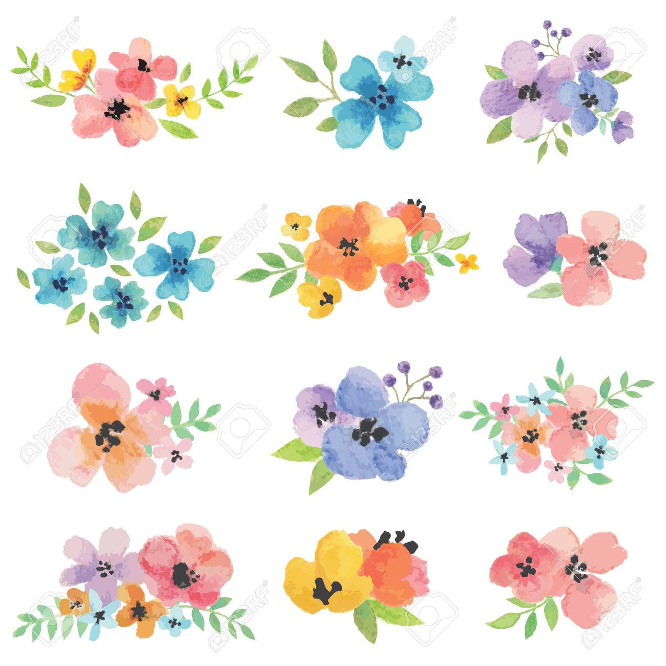 Watercolor Vector Flowers - 50098527