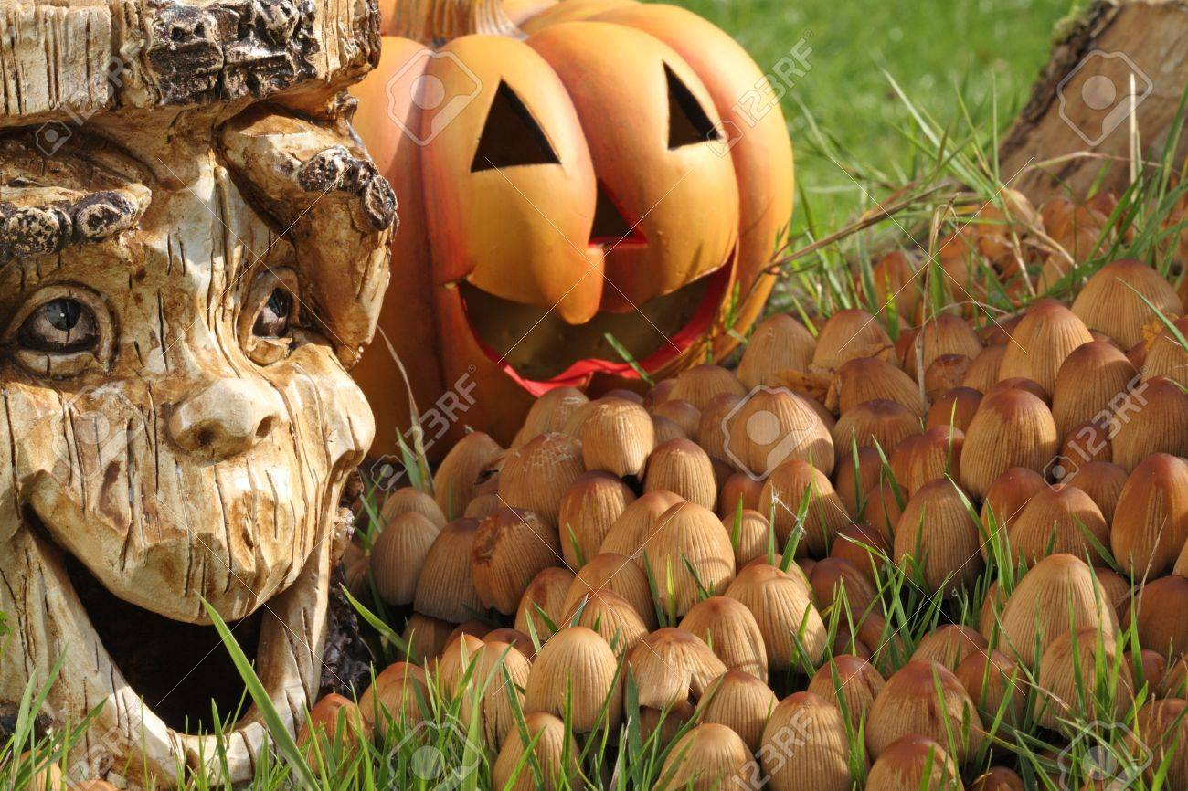 Halloween dekoration with pumpkin and tree stump. Stock Photo - 8063820