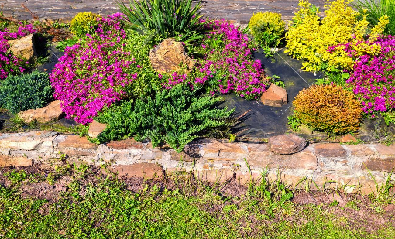 Fleurs De Rocaille Jaune Rouge Rose Coloré Et Pierres Le Jardin ...