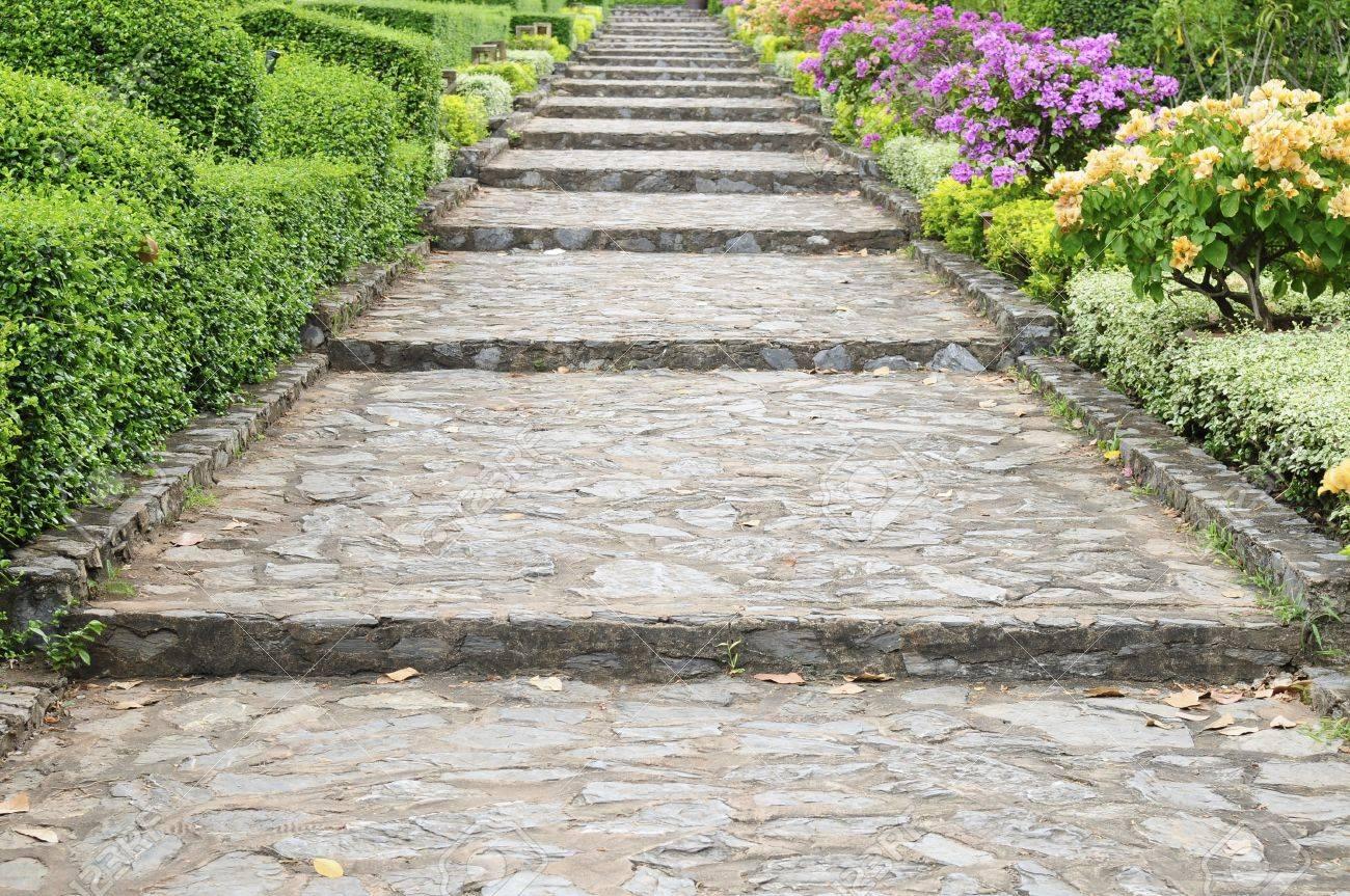 Stone pathway pass through a garden Stock Photo - 9577941