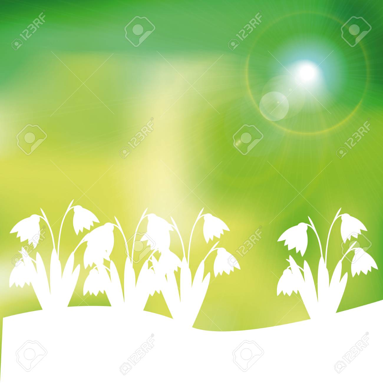 Green and yellow spring with sunlight Stock Vector - 24914005