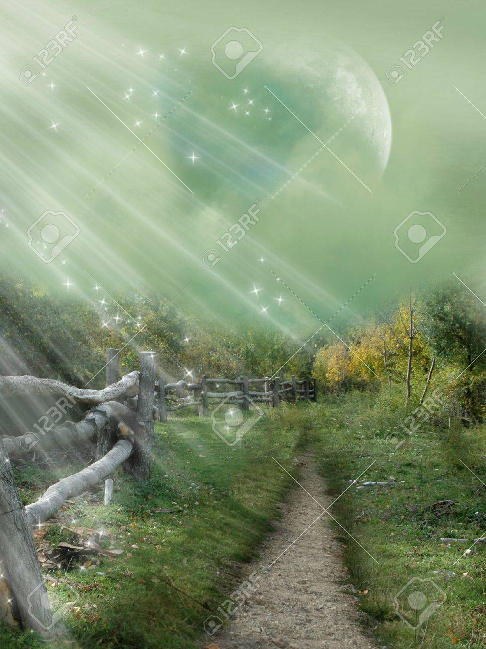 magical passage in the forest with ligth Stock Photo - 10999321