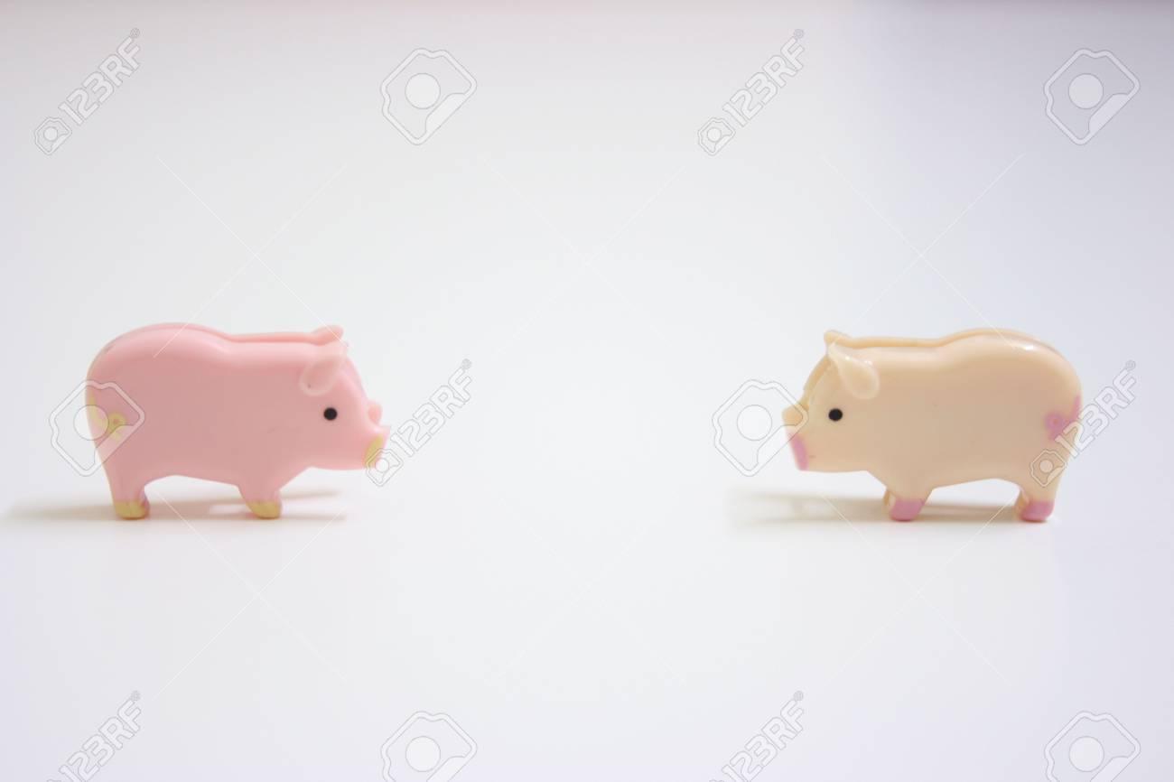 Two swines meeting up Stock Photo - 3354011