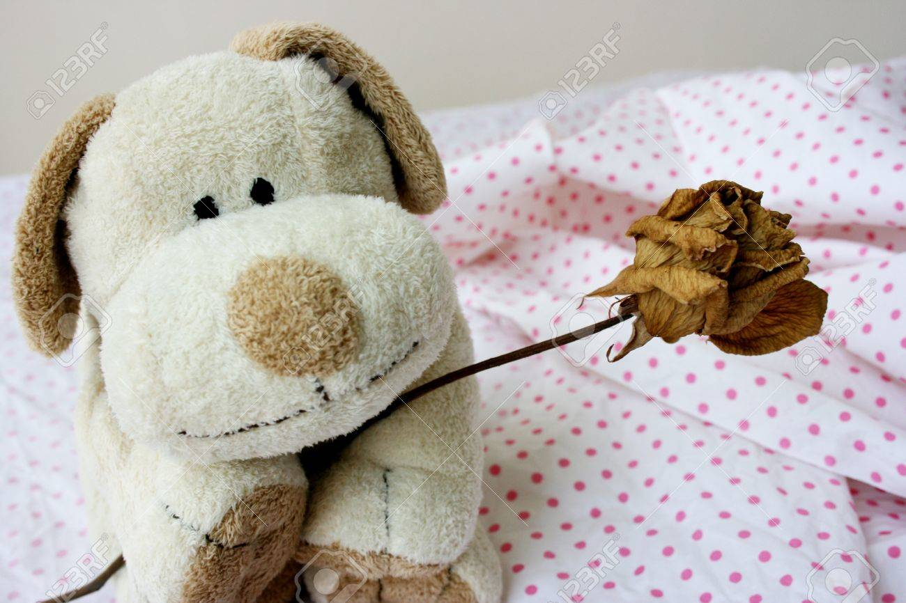 Soft toy puppy giving out flower Stock Photo - 11135715