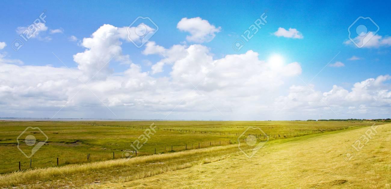 Idyllic lawn with sunlight Stock Photo - 5647370