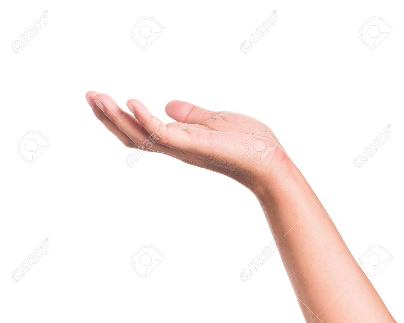 Hands gesture holding something on isolated background. - 131856024