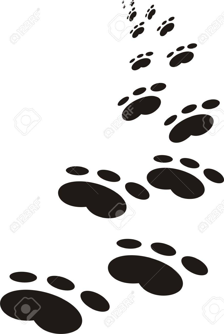 Traces of an animal Stock Vector - 9566016