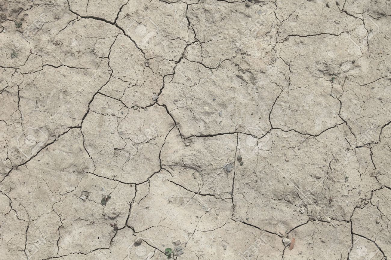 Background texture of a flawed dried out ground. Stock Photo - 6947219