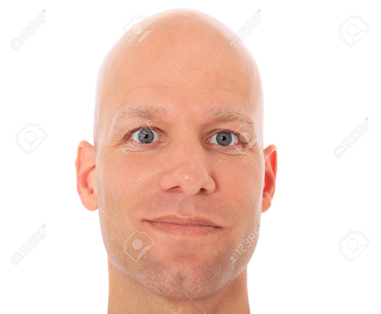 head of a bald man all on white background stock photo picture