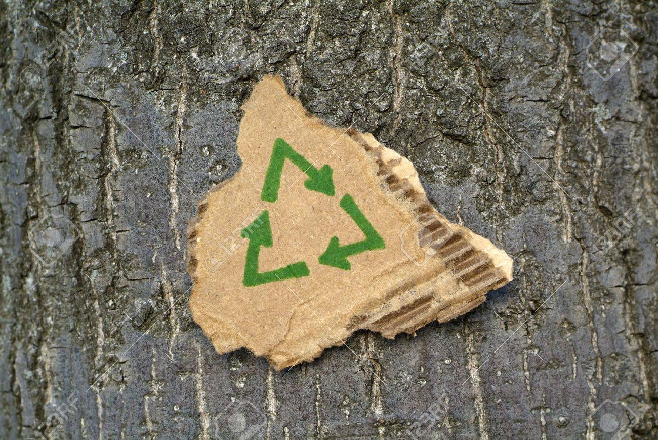 Recycled cardboard surrounded by tree bark. Stock Photo - 4373618