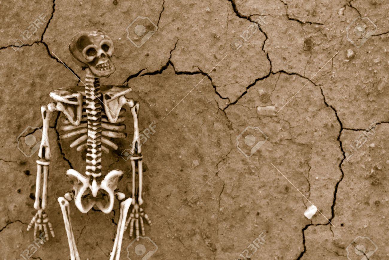 Distressed Skeleton background Stock Photo - 7399328