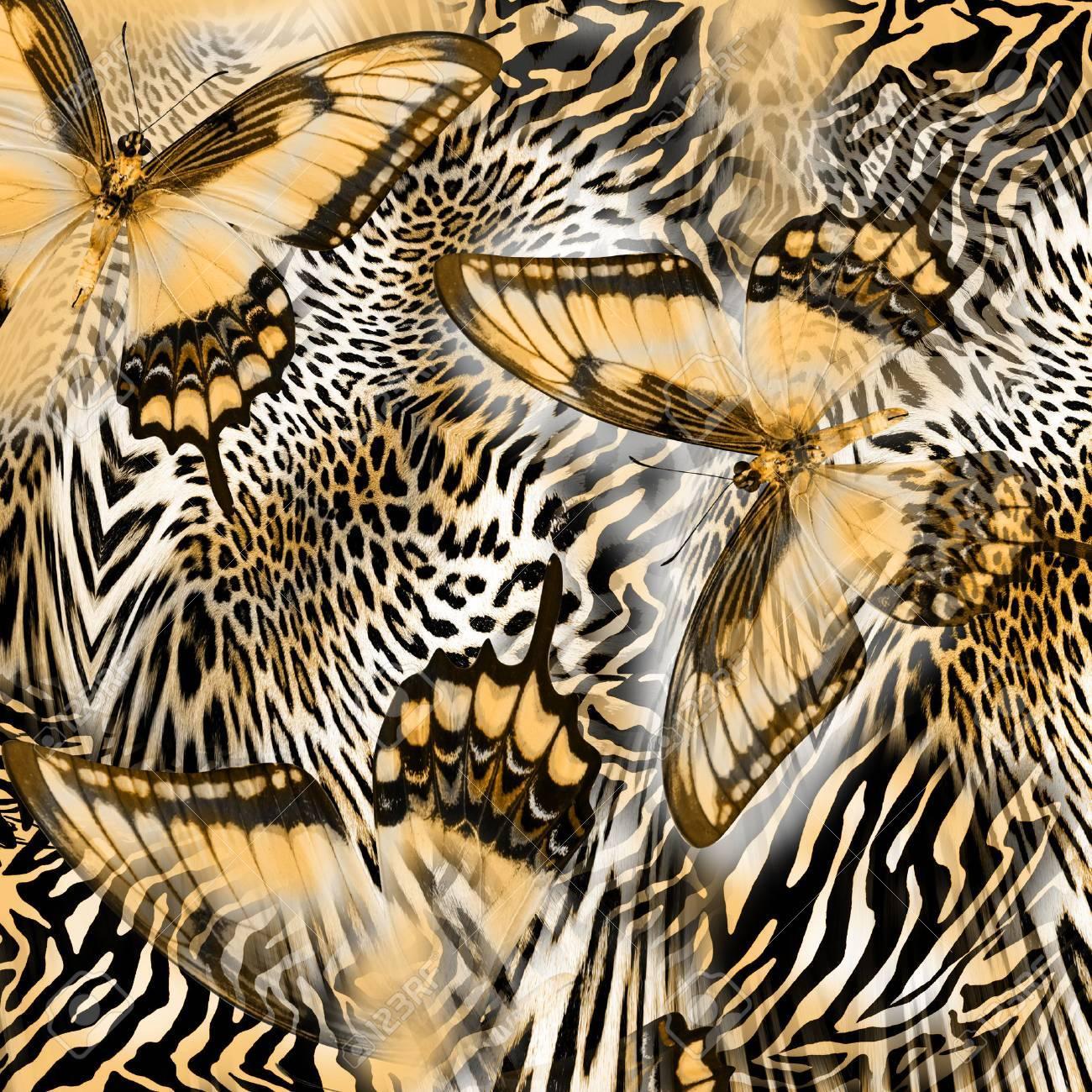 butterfly snake zebra skin background - 53538840
