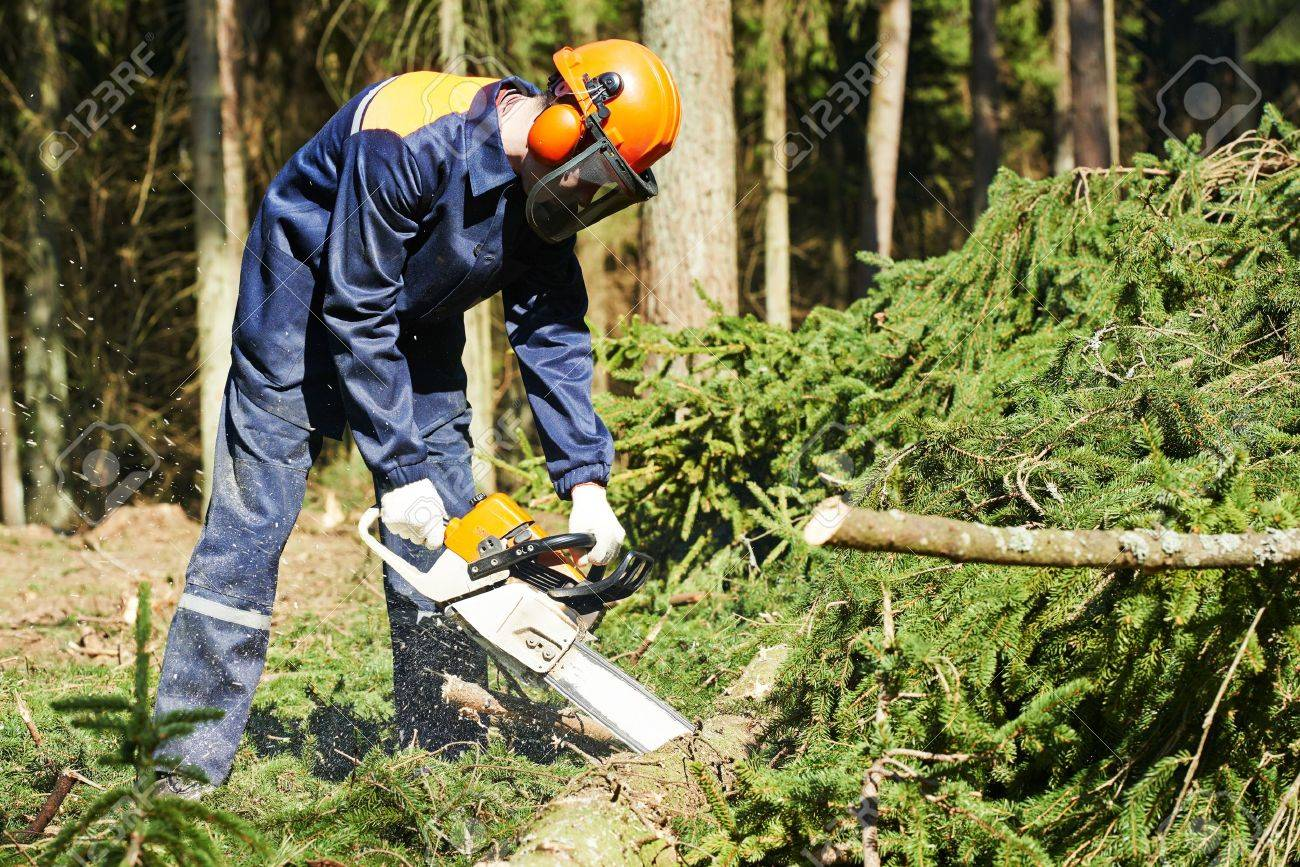 chainsaw stock photos royalty free chainsaw images and pictures