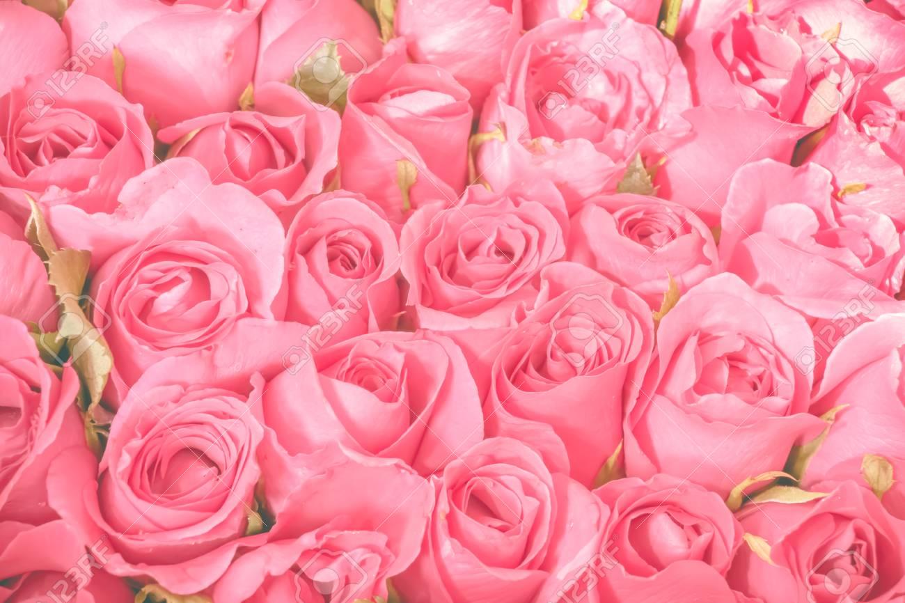 Fondo De Ramo De Rosas Rosadas Conjunto De Patrón De Flores
