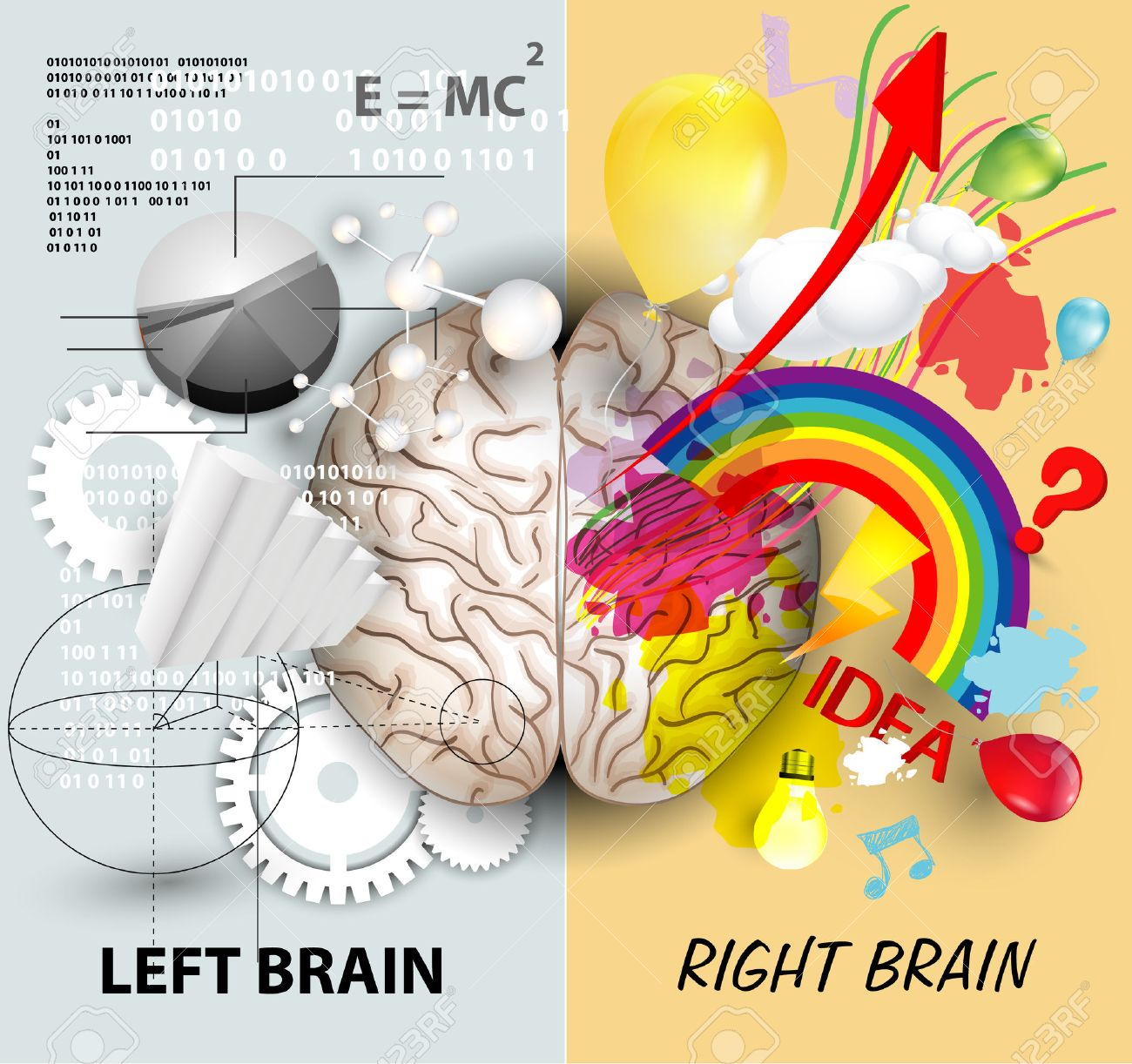 Left and Right brain functions - 35524958