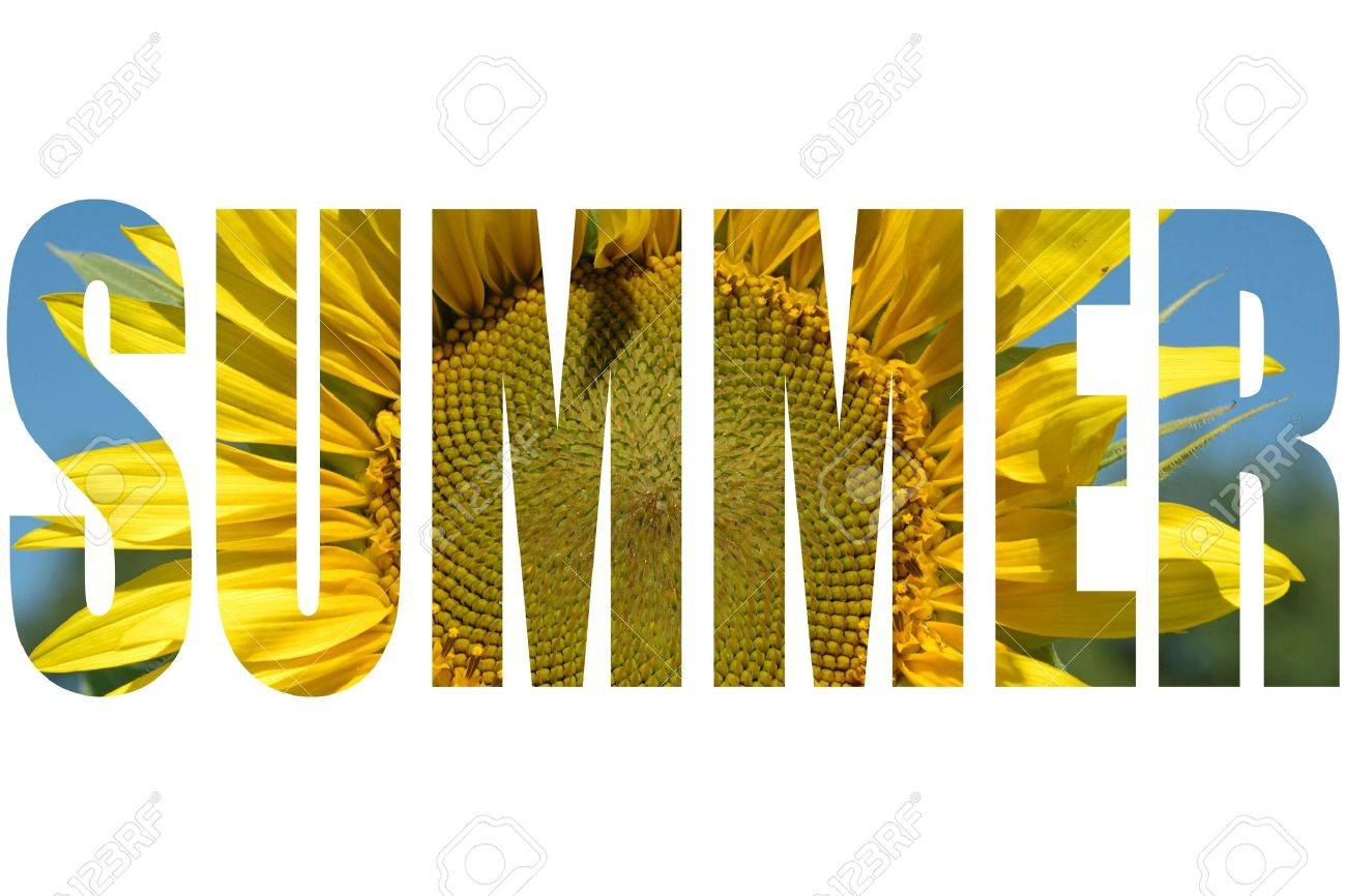 summer word with sunflower texture stock photo picture and royalty