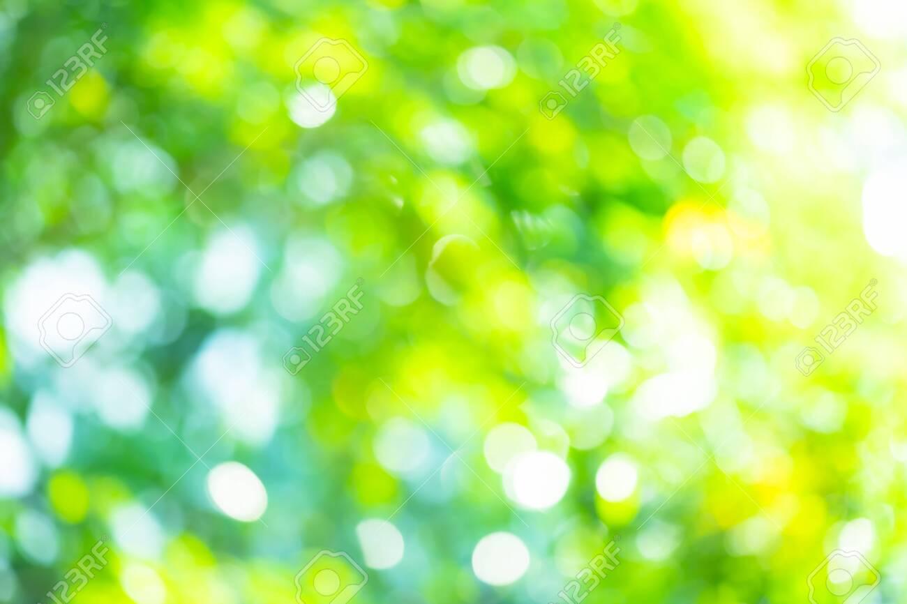 Abstract background Natural green bokeh - 150217276