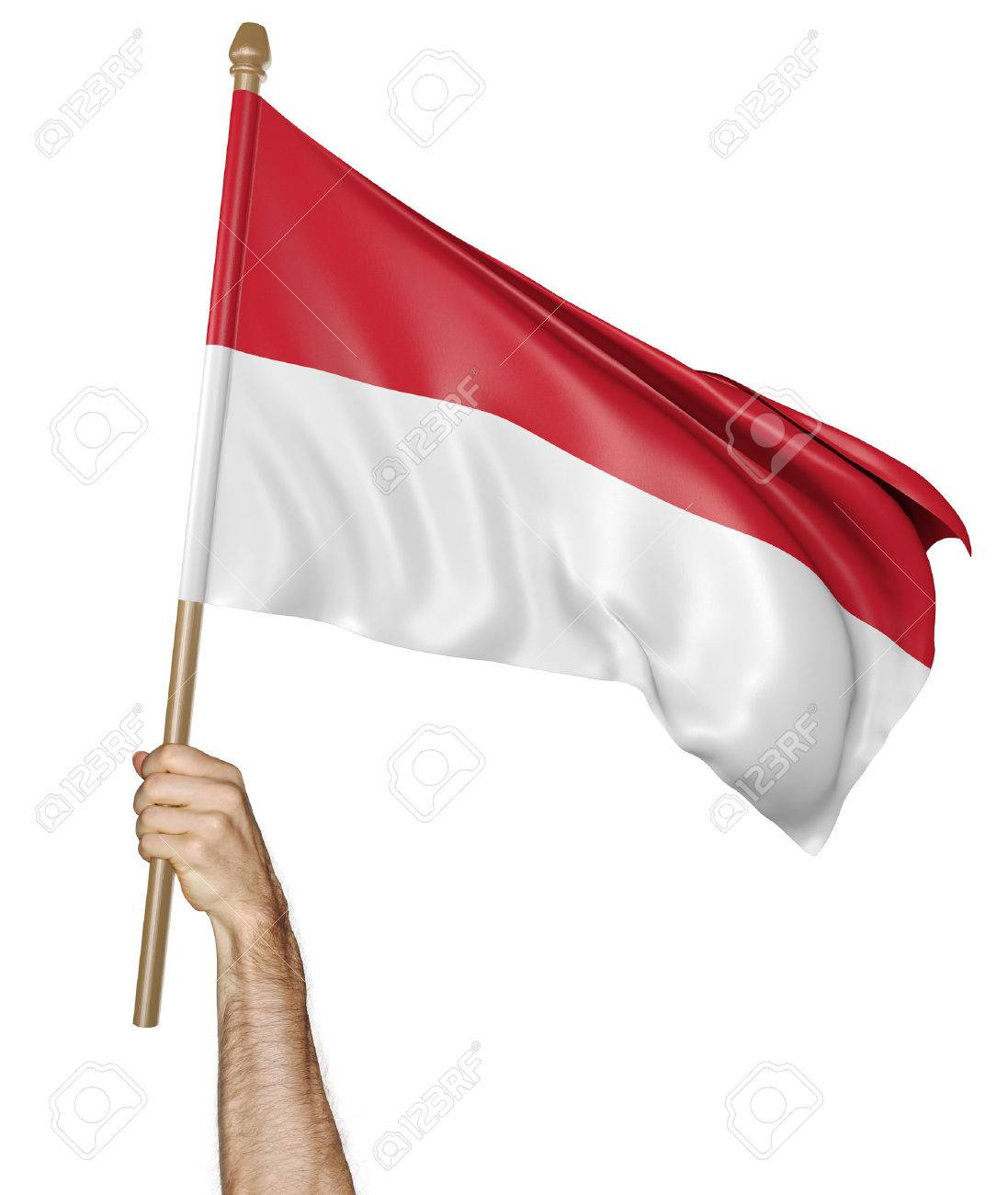 Hand proudly waving the national flag of Indonesia - 52964609