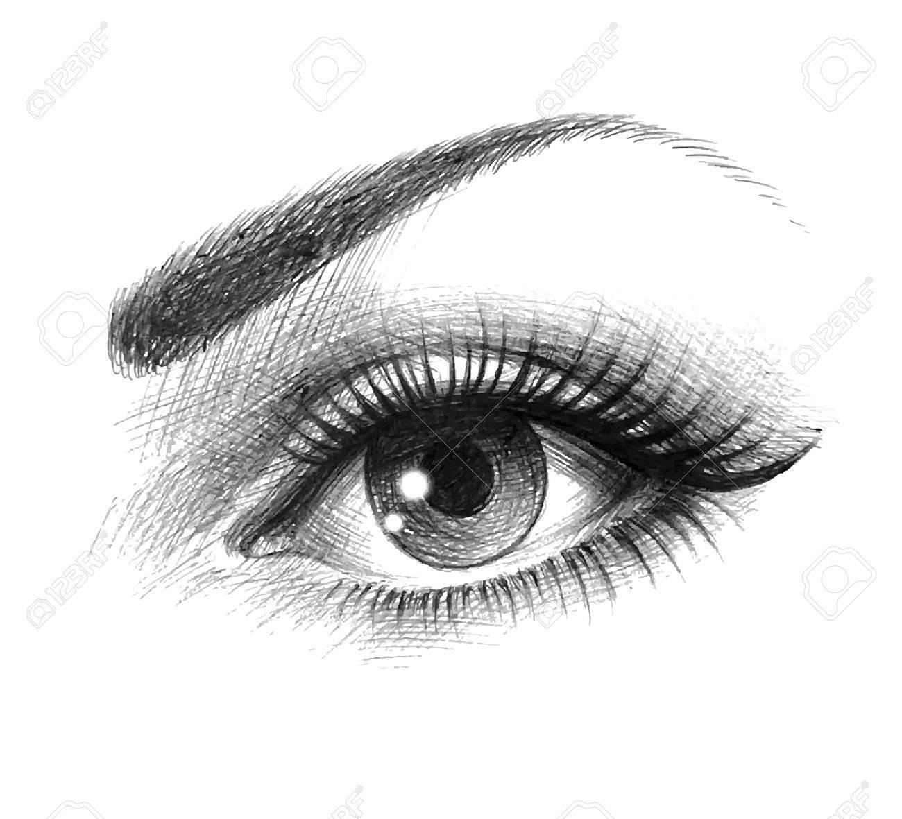 beautiful female eye - 41086822