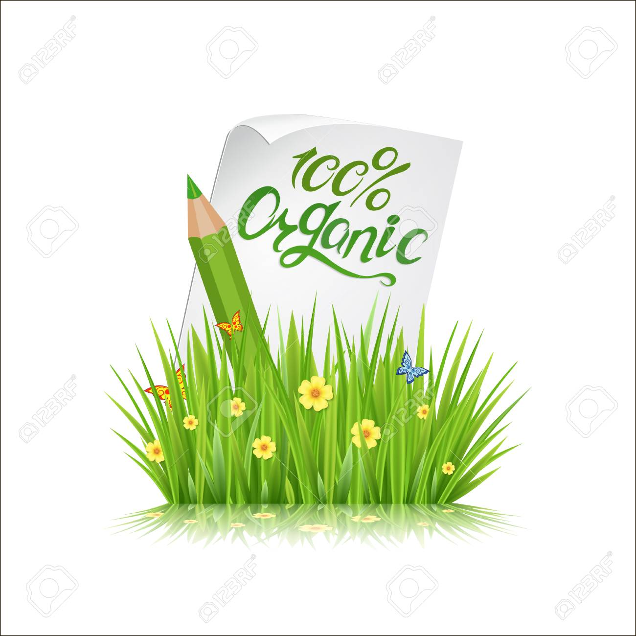 Fresh spring green grass leaves frame template with curling.