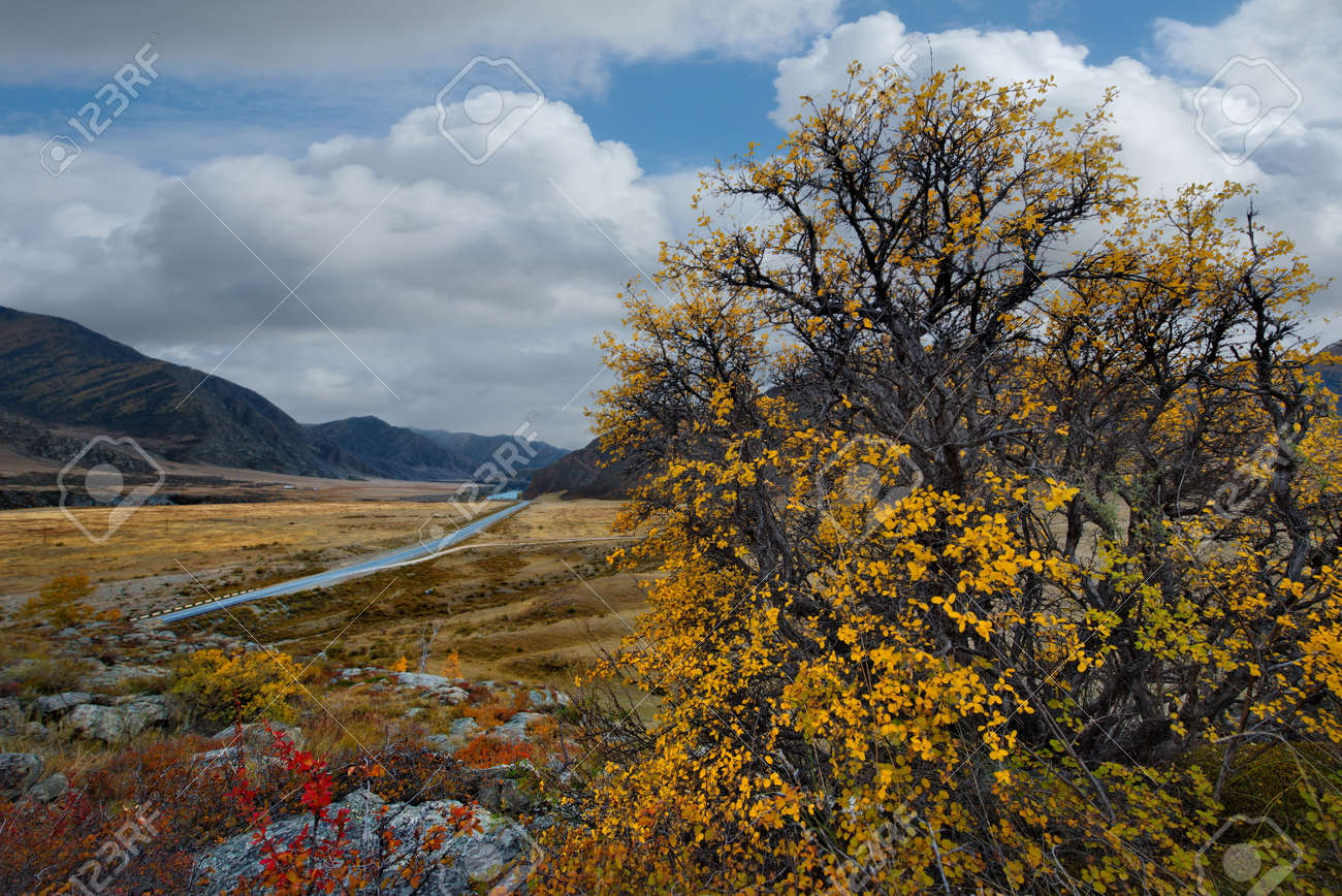 Russia. South Of Western Siberia. mountain Altai. Autumn colors of mountain valleys along the Chui tract. - 160443665