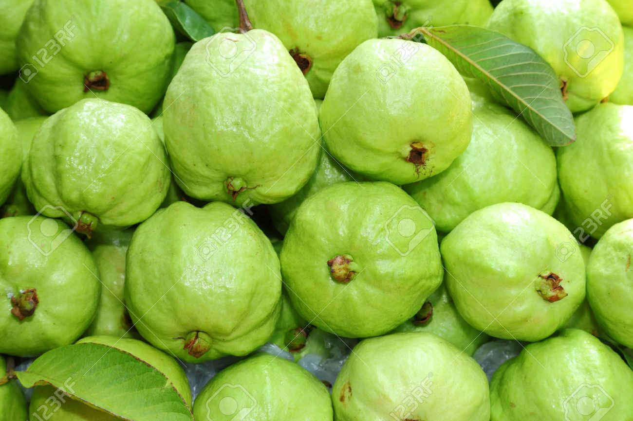 Fresh and green Guava fruit was sale in Thailand market - 15426056
