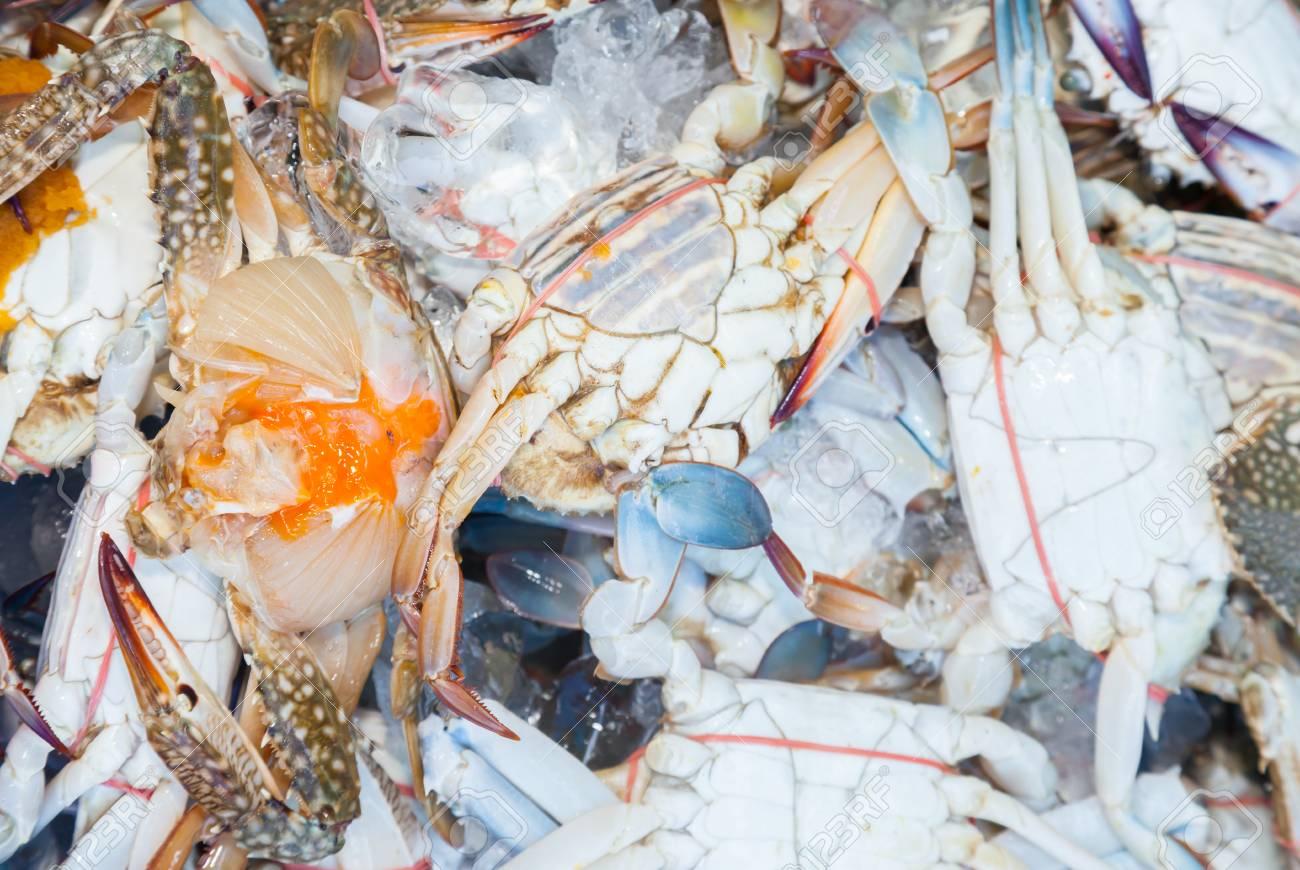 Fresh raw flower crab or blue crab in Thailand fresh market Stock Photo - 17119450