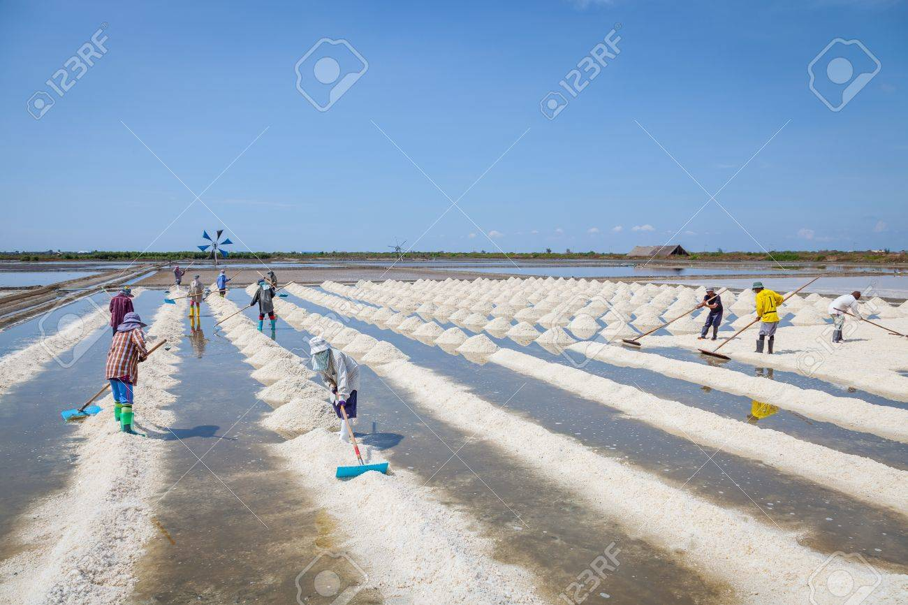 SAMUTSAKORN,THAILAN D -APRIL 28: The workers are sweeping the raw salt for ready to moving to the store near Rama II road on April 28,2013 in Samutsakorn,Thailand - 19545675