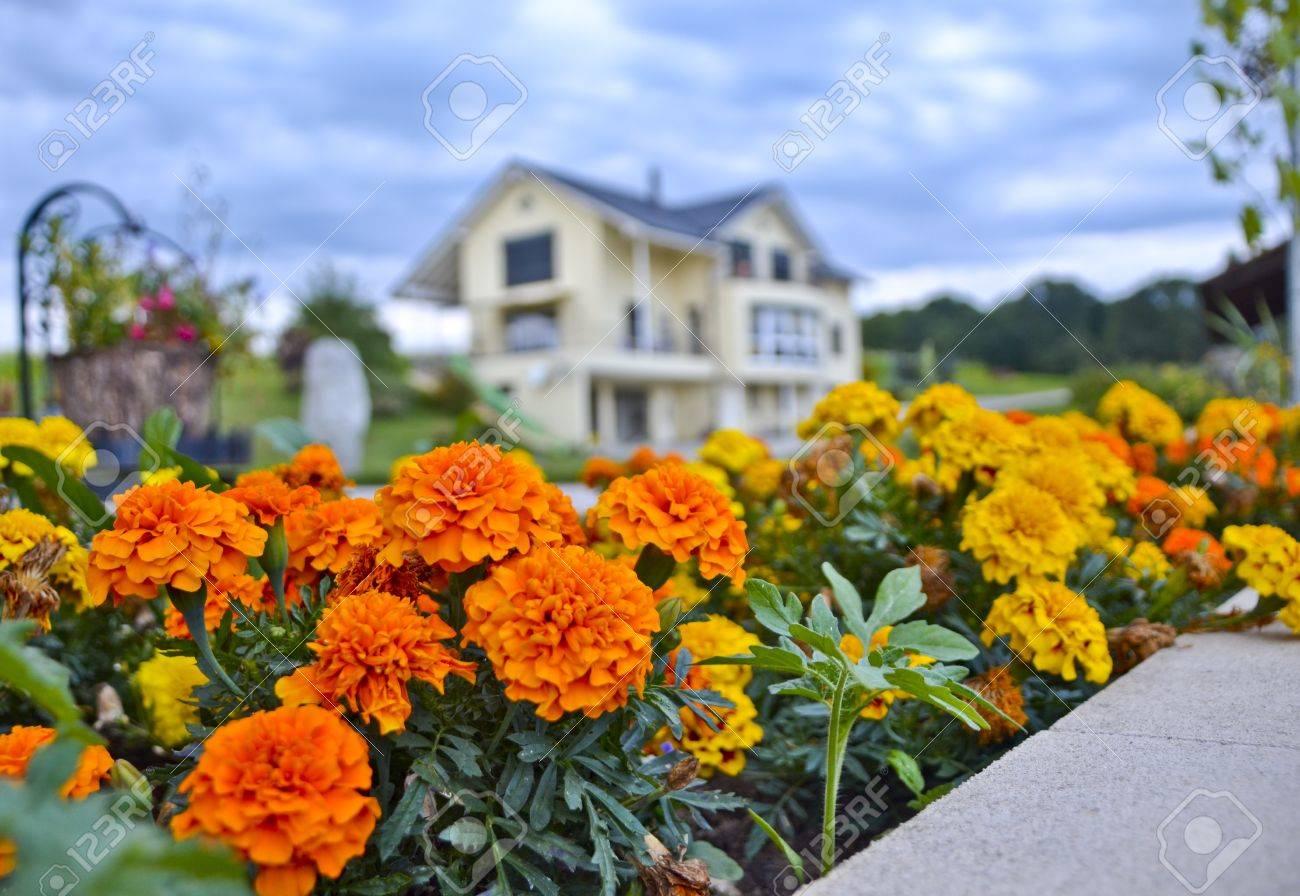 Beau Petit Jardin Fleuri Et La Maison En Arriere Plan Banque D