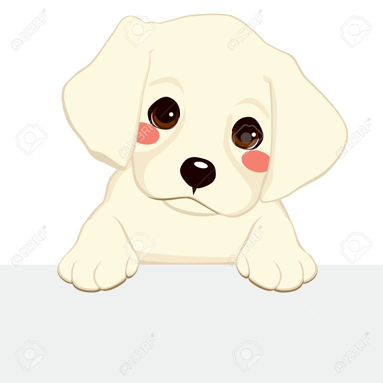 White Labrador Golden Retriever Puppy Holding Blank Banner Royalty