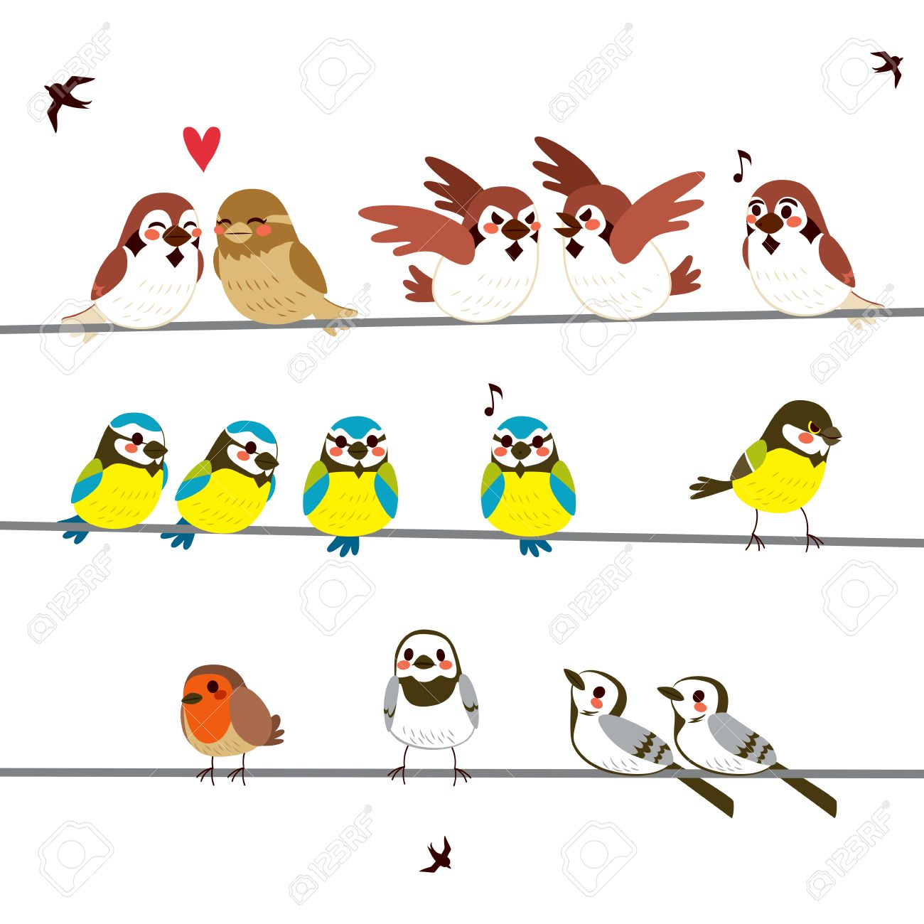 Wires Full Of Funny Birds Of Different Kinds Doing Different ...