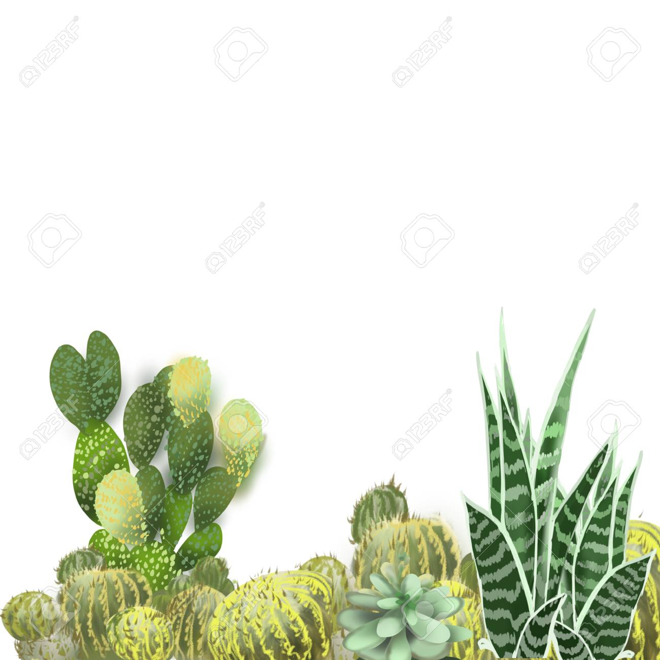 Cactus Grouping Hand Drawn Original Painted Artwork Border Background Stock Photo Picture And Royalty Free Image Image 105088640
