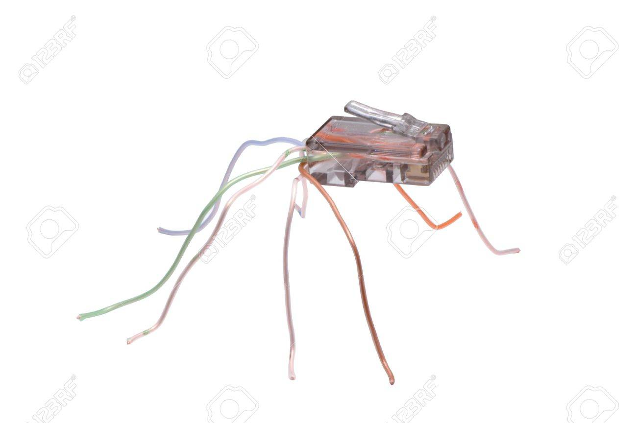 Making World Wide Web - spider made of RJ45 network connector Stock Photo - 3020203