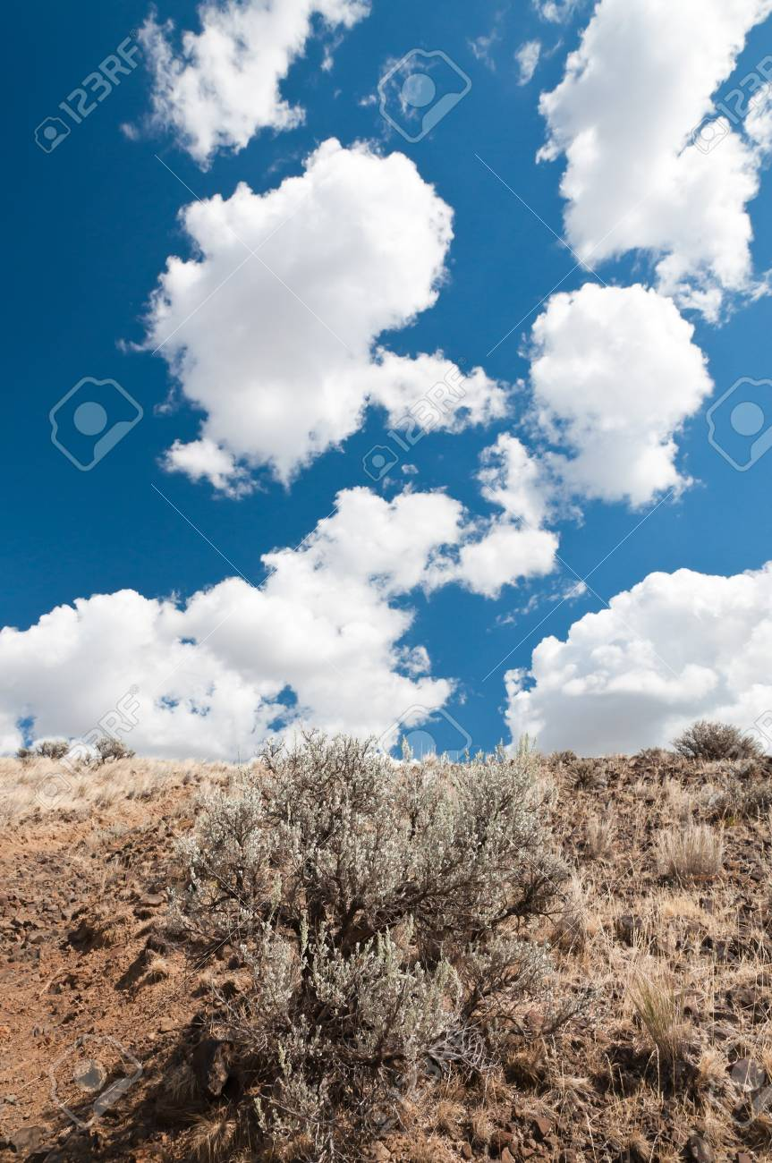 White fluffy clouds on bright blue sky  over the hill in Eastern Washington Stock Photo - 8199324