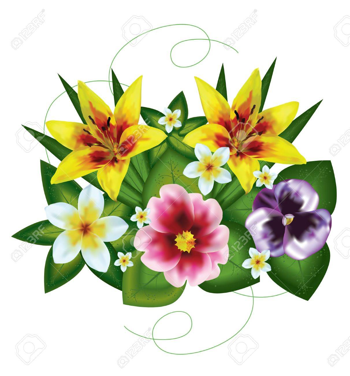 Bouquet of beautiful flowers painted on a white background with bouquet of beautiful flowers painted on a white background with a mesh stock vector 12484617 izmirmasajfo