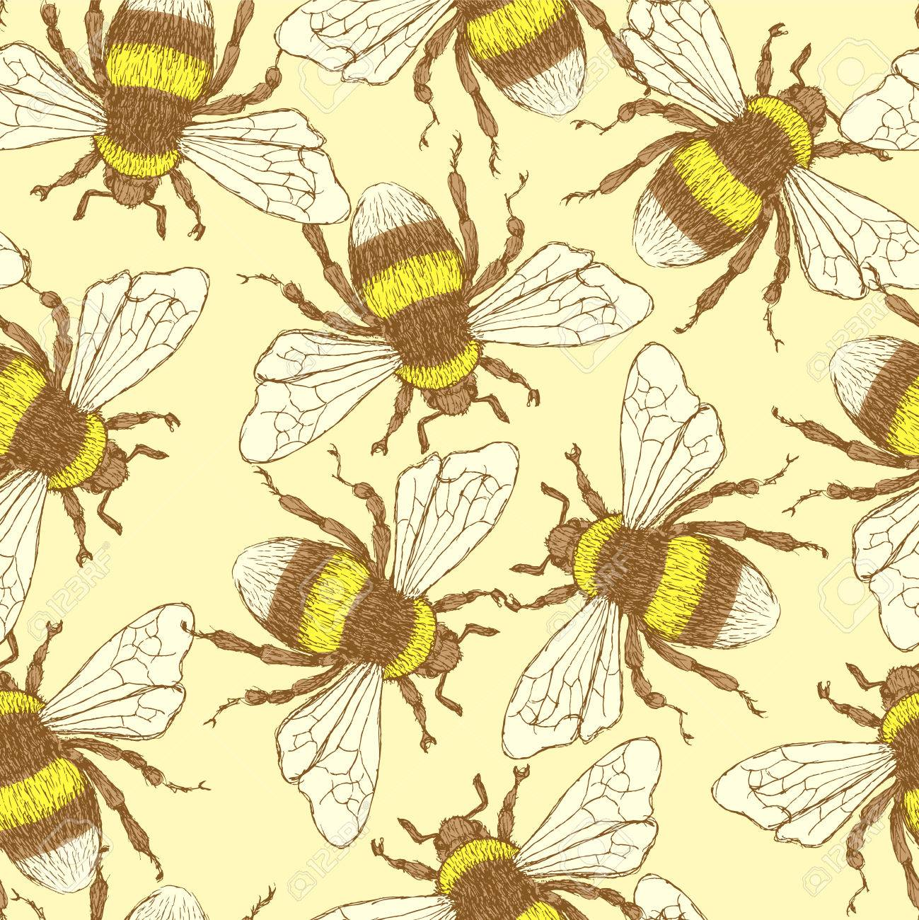 Sketch Bumble Bee In Vintage Style Vector Seamless Pattern Stock