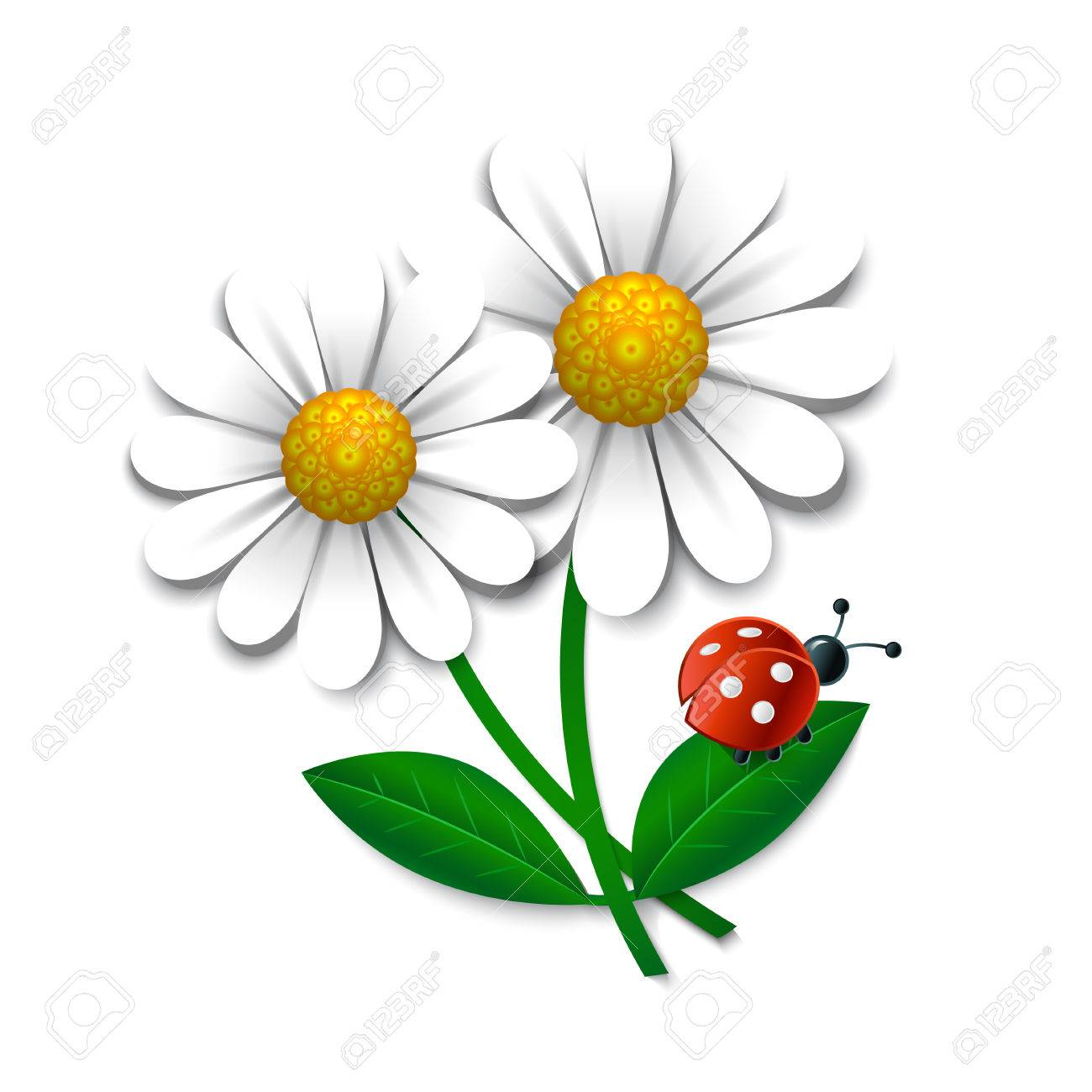 Vector Flowers With Ladybug, Design Element Royalty Free Cliparts ...
