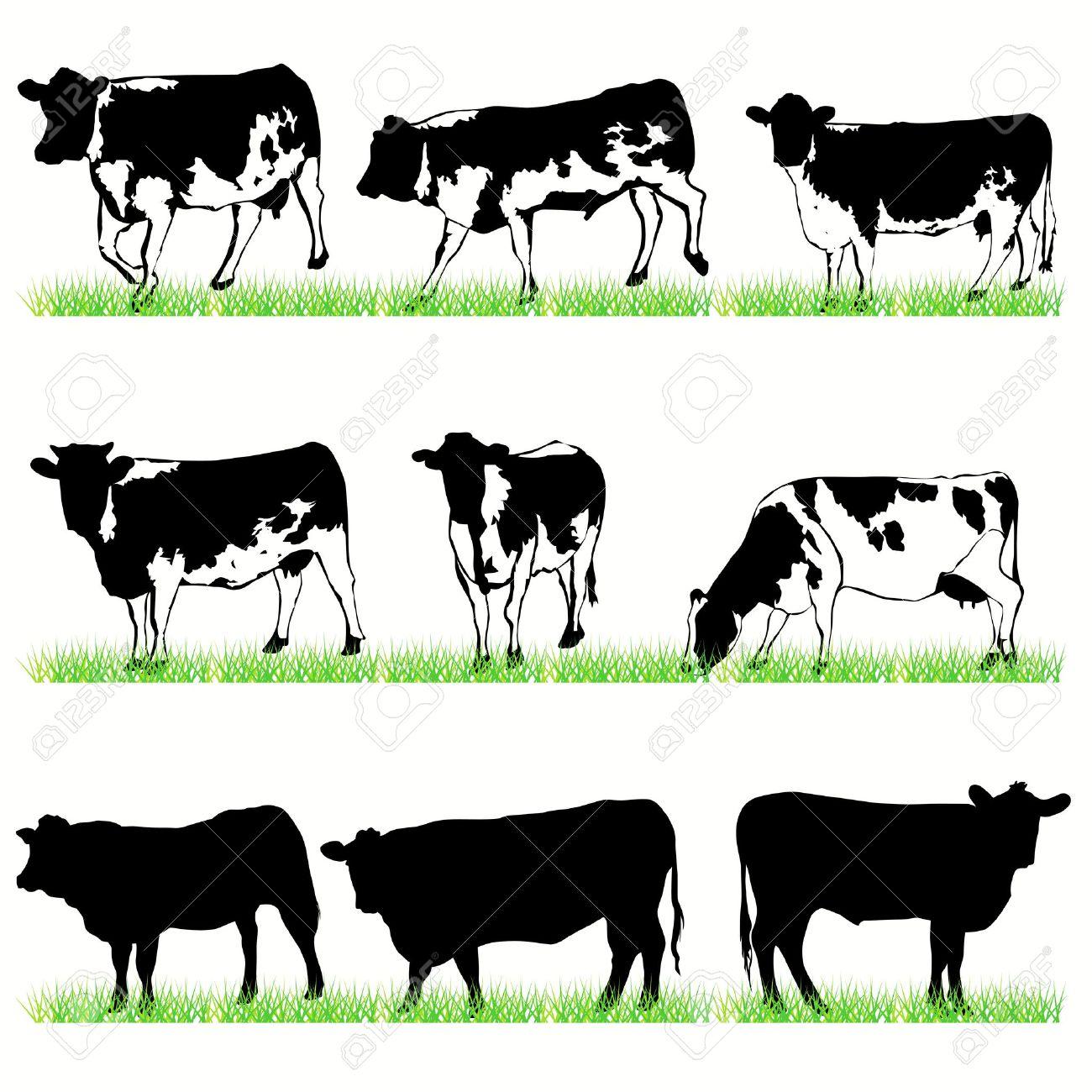Cows and bulls set Stock Vector - 9818029
