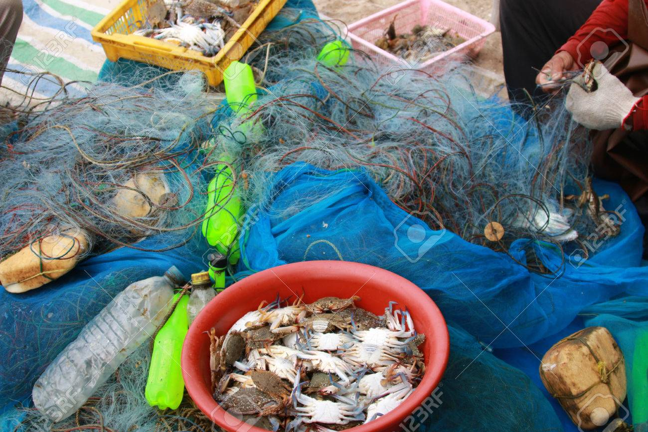 Fishermen are people living on the seashore. Fishery is mainly As primary occupation RMF And to the trade - 25104977